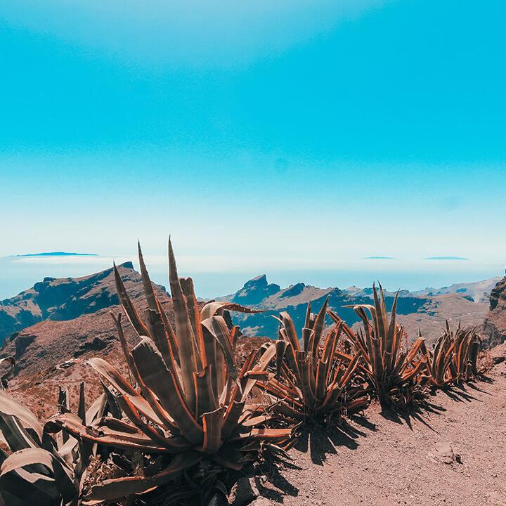 motorcycle rental in Tenerife view